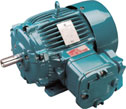 EEx d/e Flameproof Motors