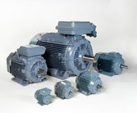 Dust ignition proof low voltage motors