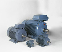 General Purpose Cast Iron Motors