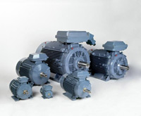 Process Performance Cast Iron Motors (IEC)